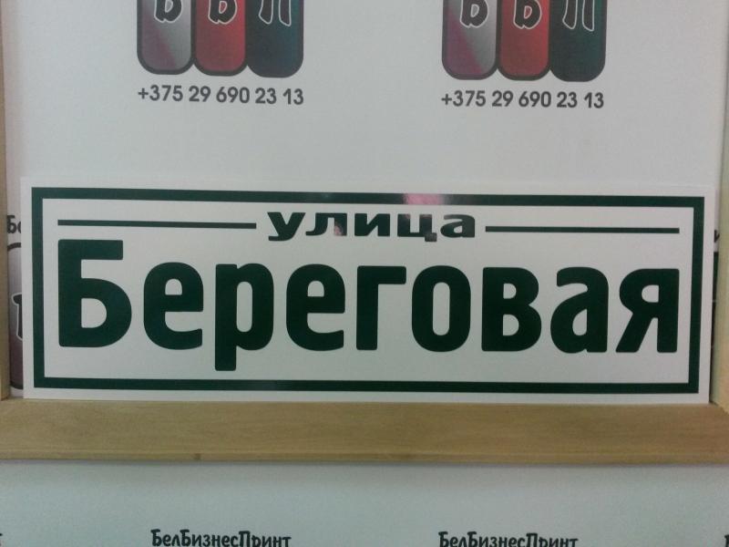 Табличка Техно 50 на 16 см зелёные буквы