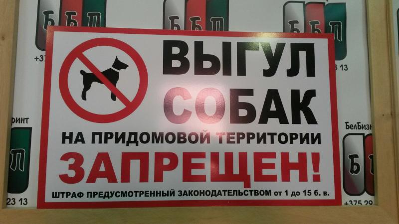 Табличка выгул собак запрещён