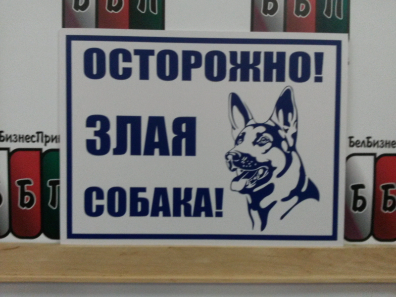 Табличка злая собака 25 на 35 см