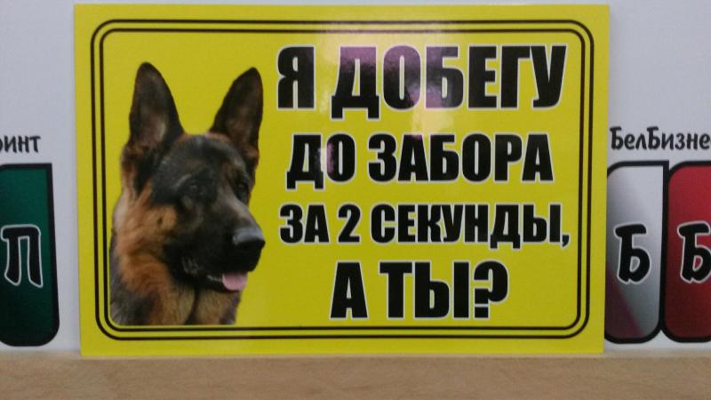 Табличка с собакой 35 на 25 сантиметров