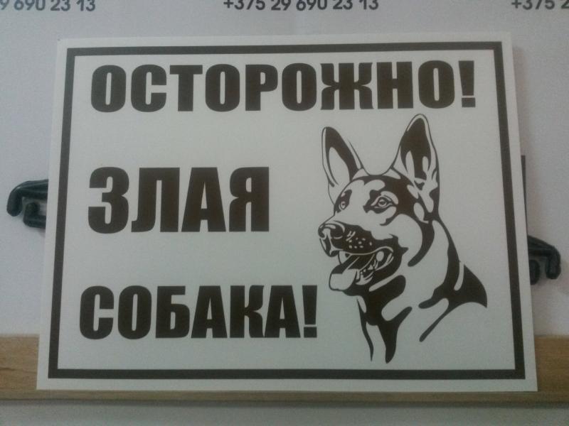 Табличка 25 на 35 см осторожно злая собака