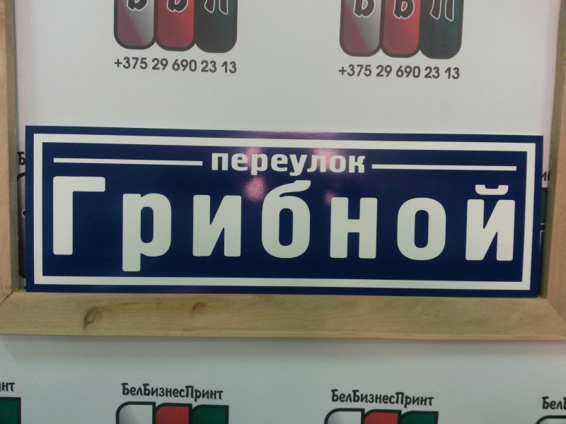 Табличка 50 на 16 см с названием улицы 1