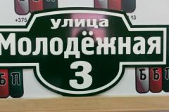 Табличка Авеню 50 на 25 см зелёный фон 23 05 18